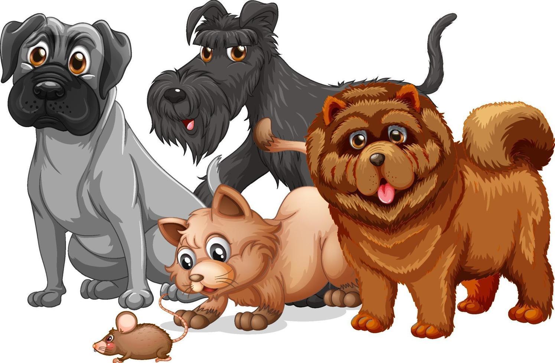 hund och katt i en grupptecknad karaktär vektor