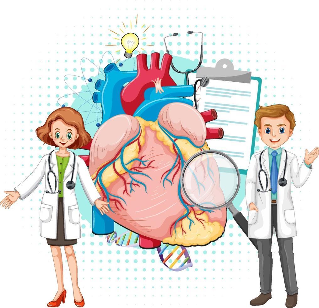 läkare och mänskligt hjärta på vit bakgrund vektor