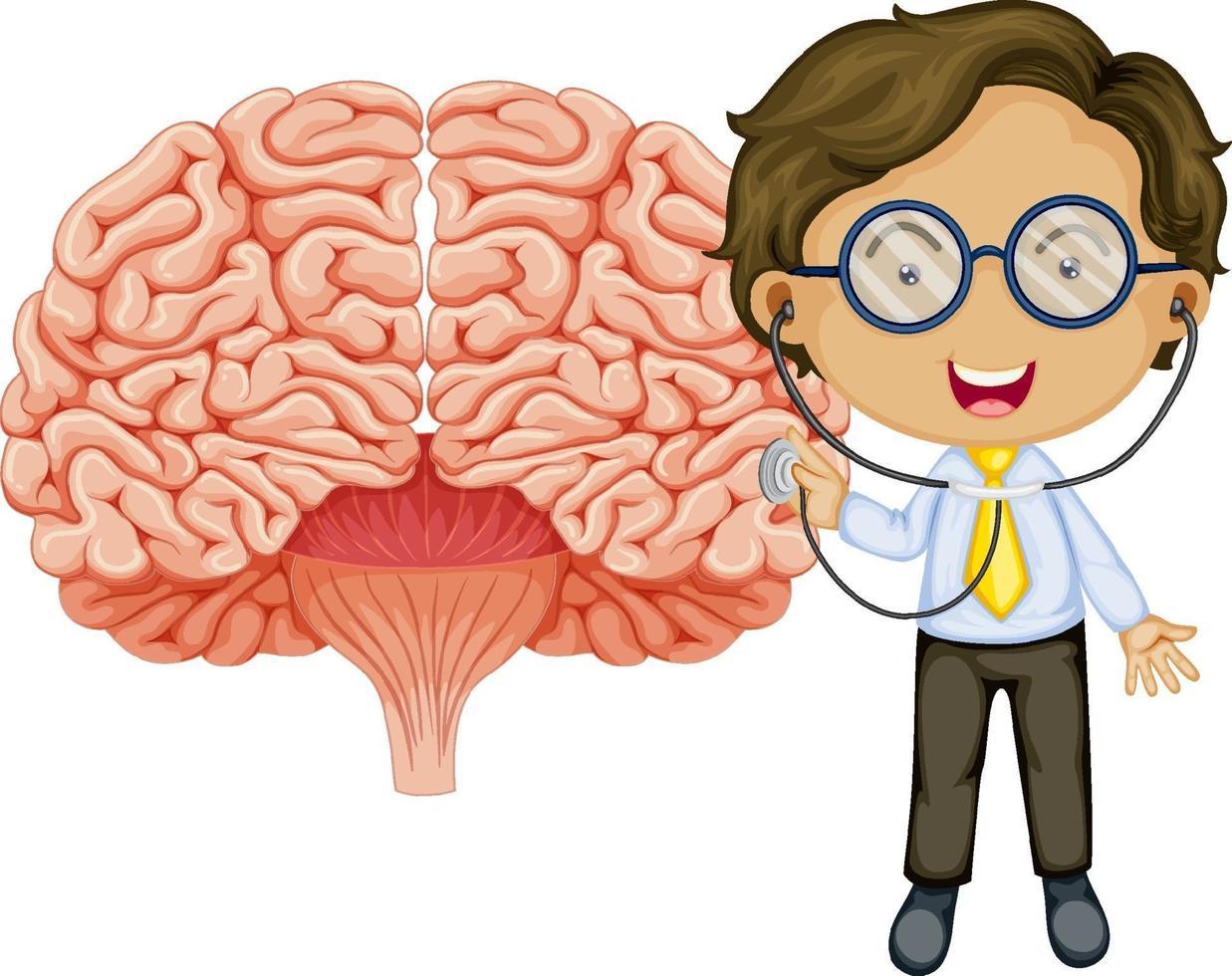 stor hjärna med en läkare seriefigur vektor