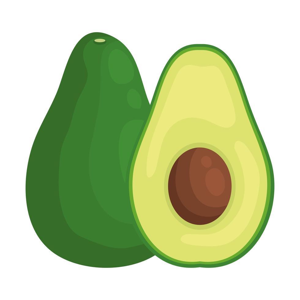 avokado färsk grönsak hälsosam ikon vektor