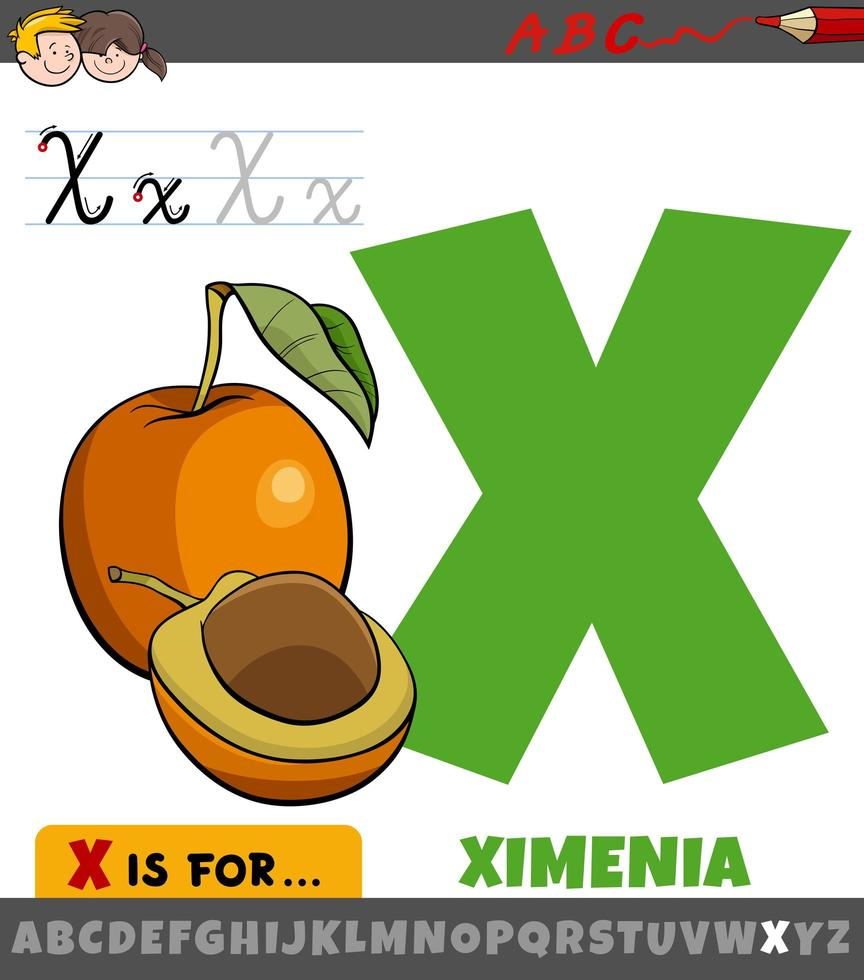 Buchstabe x Arbeitsblatt mit Cartoon Ximenia Frucht vektor
