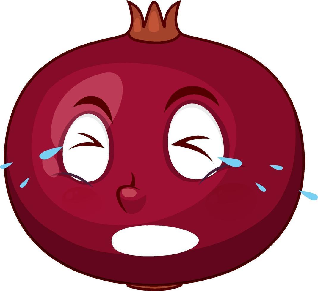 Granatapfel-Zeichentrickfigur mit Gesichtsausdruck vektor