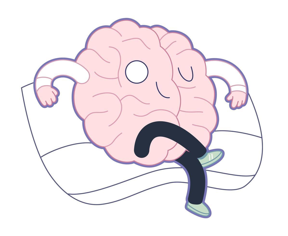 Vorherrschaft, Gehirnsammlung vektor