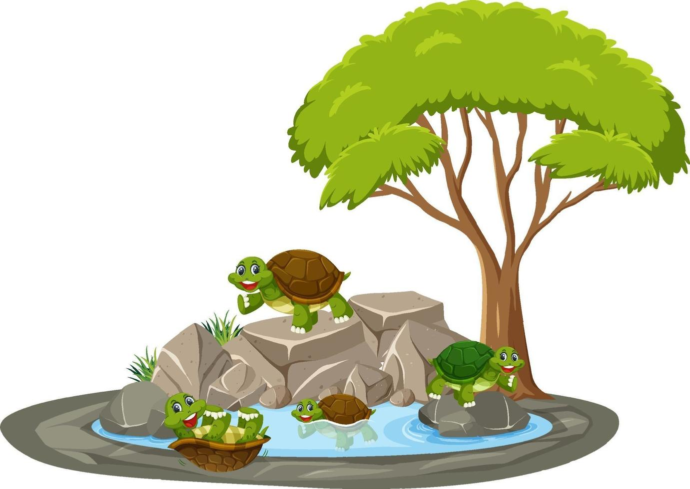 isolerad scen med många sköldpaddor runt dammen vektor