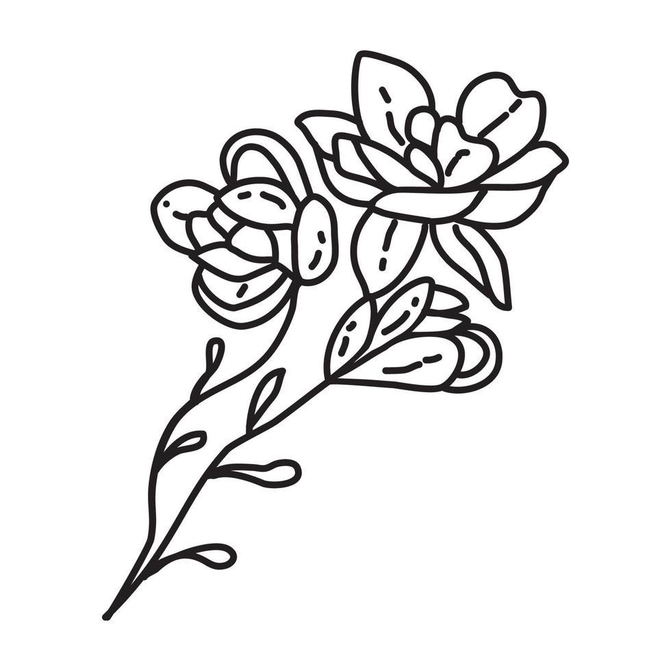 tropische Blumenikone. Gekritzel Hand gezeichnet oder Umriss Symbol Stil vektor