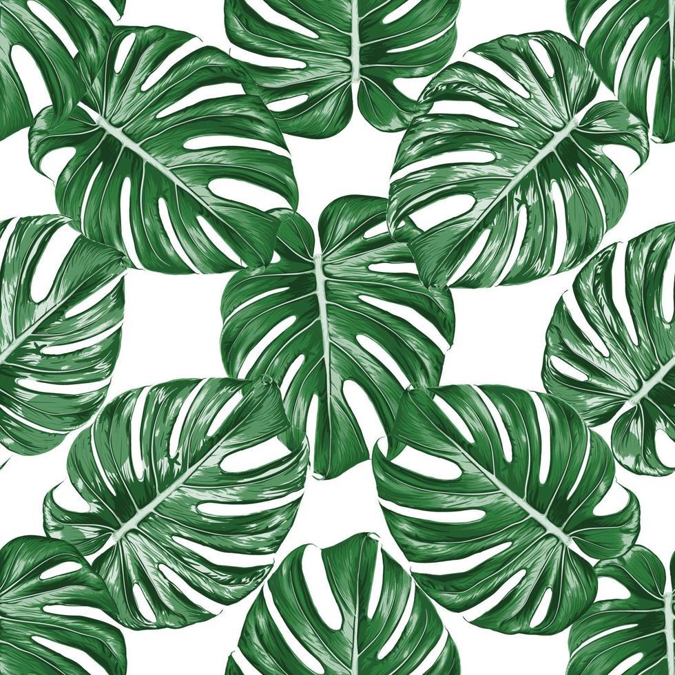 nahtloses Muster Monstera grünes Blatt auf lokalisiertem weißem Hintergrund. Vektorillustration trockenes Aquarell Handzeichnung stlye.fabric Design Texitle vektor