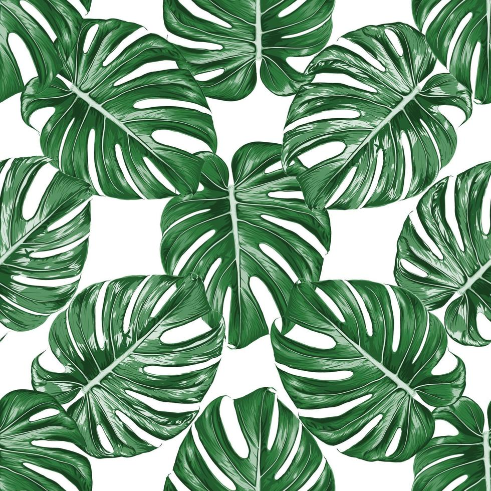 sömlösa mönster monstera gröna blad på isolerade vit bakgrund. vektor illustration torr akvarell handritning stlye. tyg design texitle