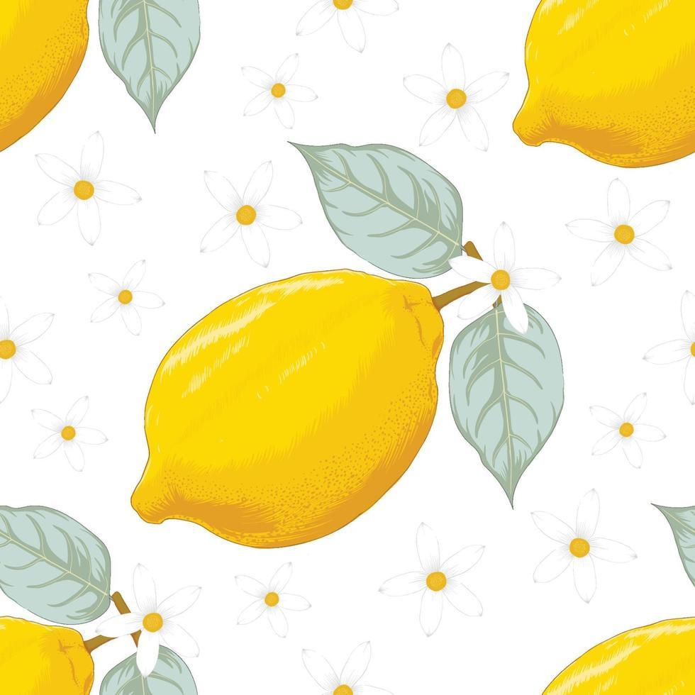 tropischer Sommer des nahtlosen Musters mit Zitronenfrucht und Blumen auf lokalisiertem weißem Hintergrund. Vektorillustration Handzeichnung Strichzeichnung. für Stoffdesign. vektor