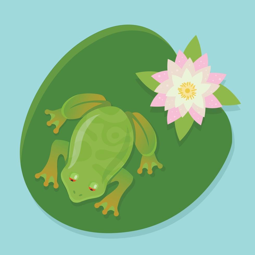 en levande groda sitter på en näckros på en damm. karaktär vektorillustration i färg vektor