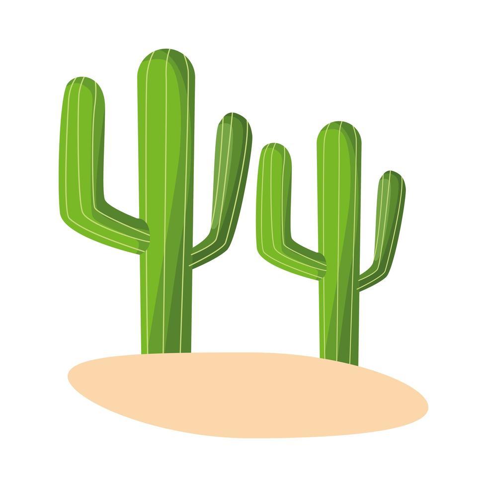 kaktus mexikansk växt isolerad ikon vektor