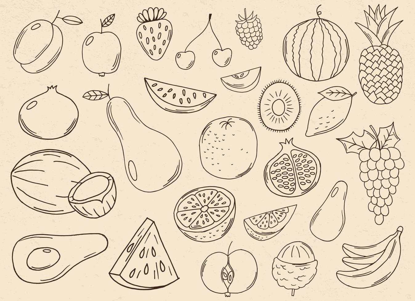 handritad frukt samling vektor design illustration isolerad på bakgrunden
