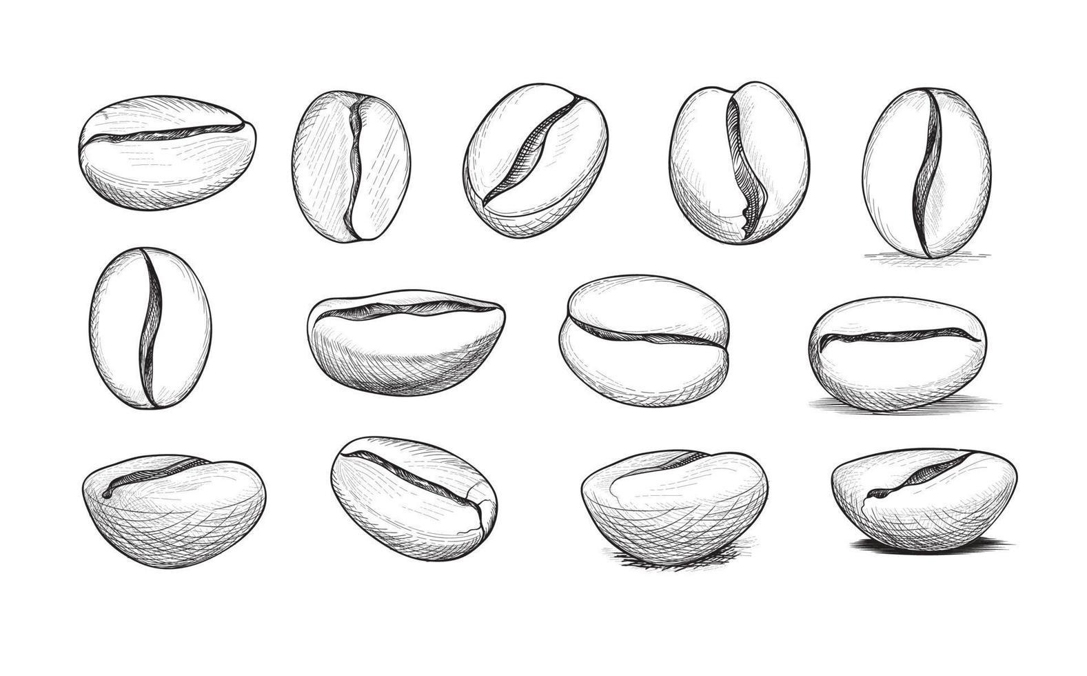 Kaffeebohnen-Icon-Set. handgezeichnete Skizzen von Kaffeebohnen. vektor