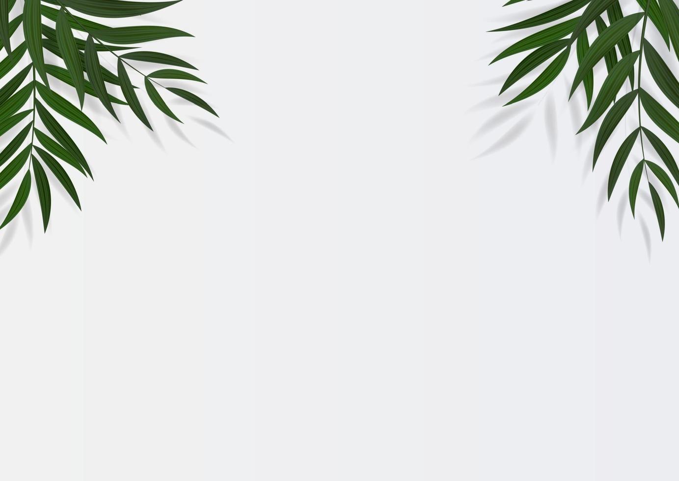 abstrakte realistische grüne tropische Palmblätter. Vektorillustration mit Kopierraum vektor
