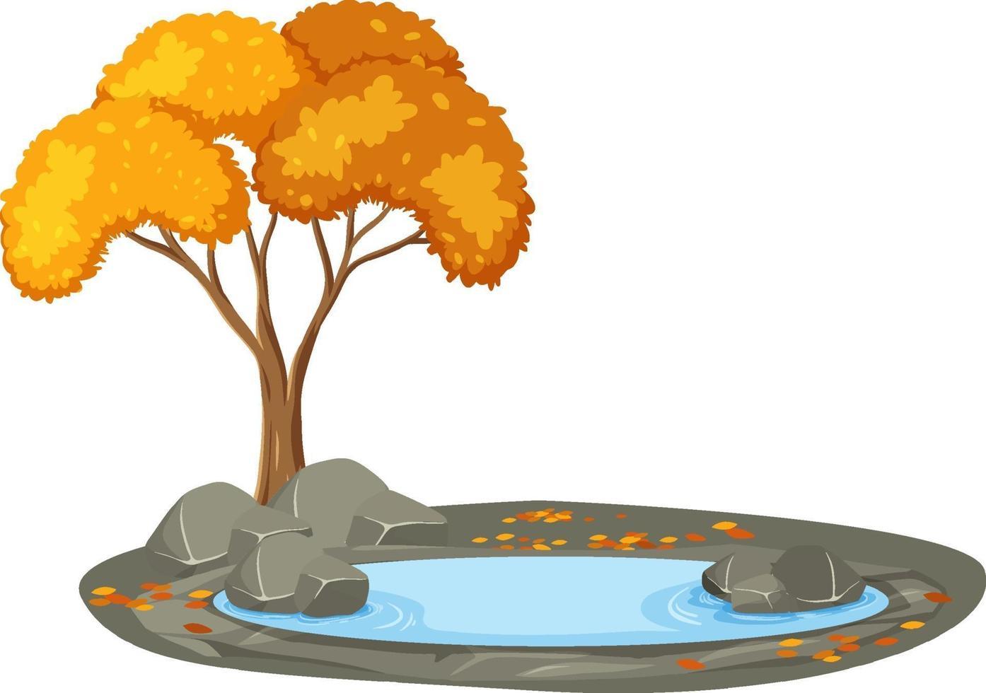 isolierter Herbstbaum auf weißem Hintergrund vektor