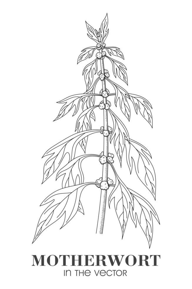 skiss av ett moderurt på en vit bakgrund vektor