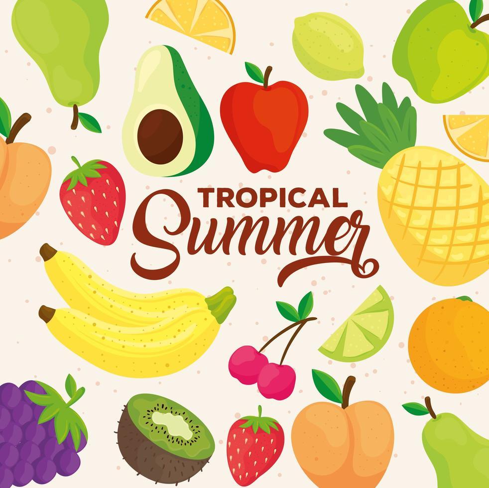 tropisk sommarbanner med färsk fruktmönster vektor