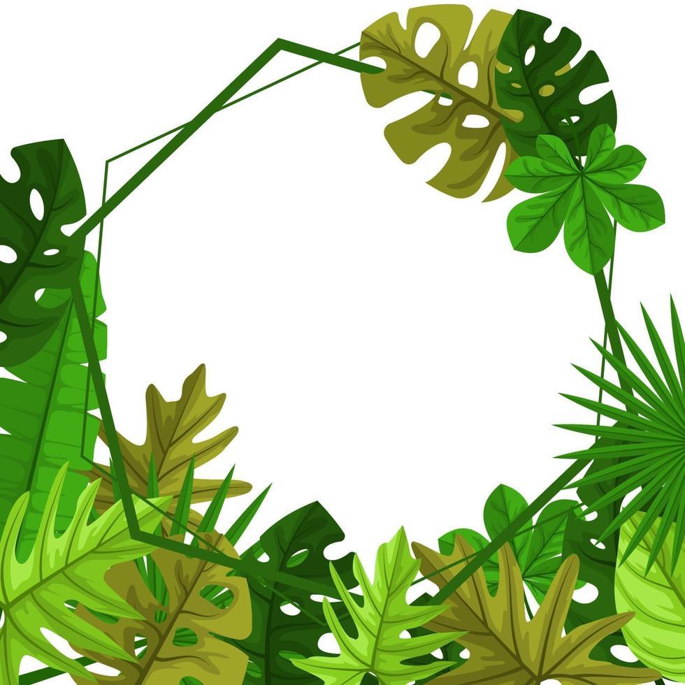 polygon bakgrundsmall med tropiska blad ram ram vektor
