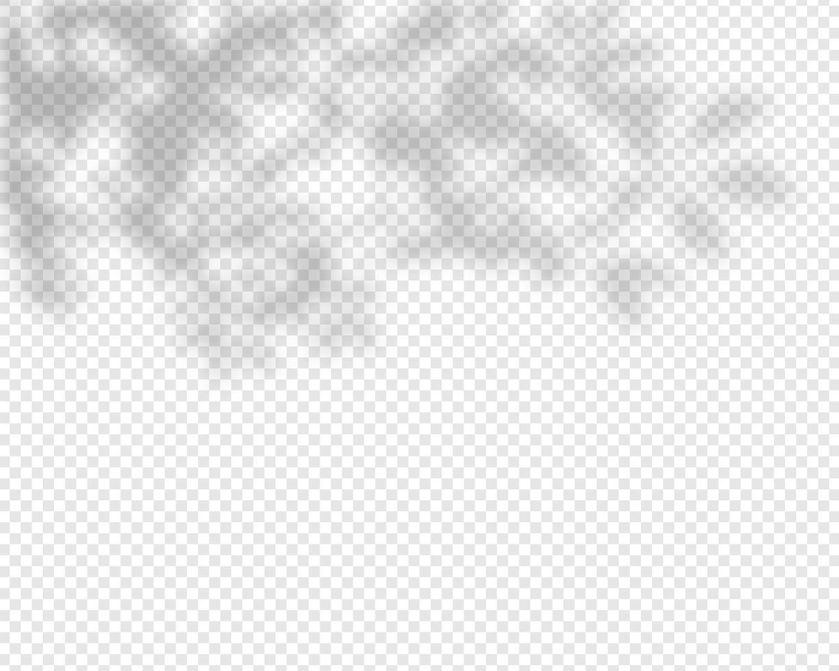 skugga överlag effekt. naturliga skuggor isolerade. vektor illustration.