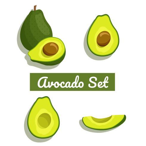 Avocado-Set-Vektor vektor