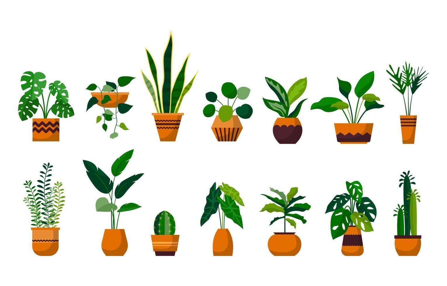 Zimmerpflanzengrün dekorativer Pflanzengarten botanischer Vektorsatz vektor