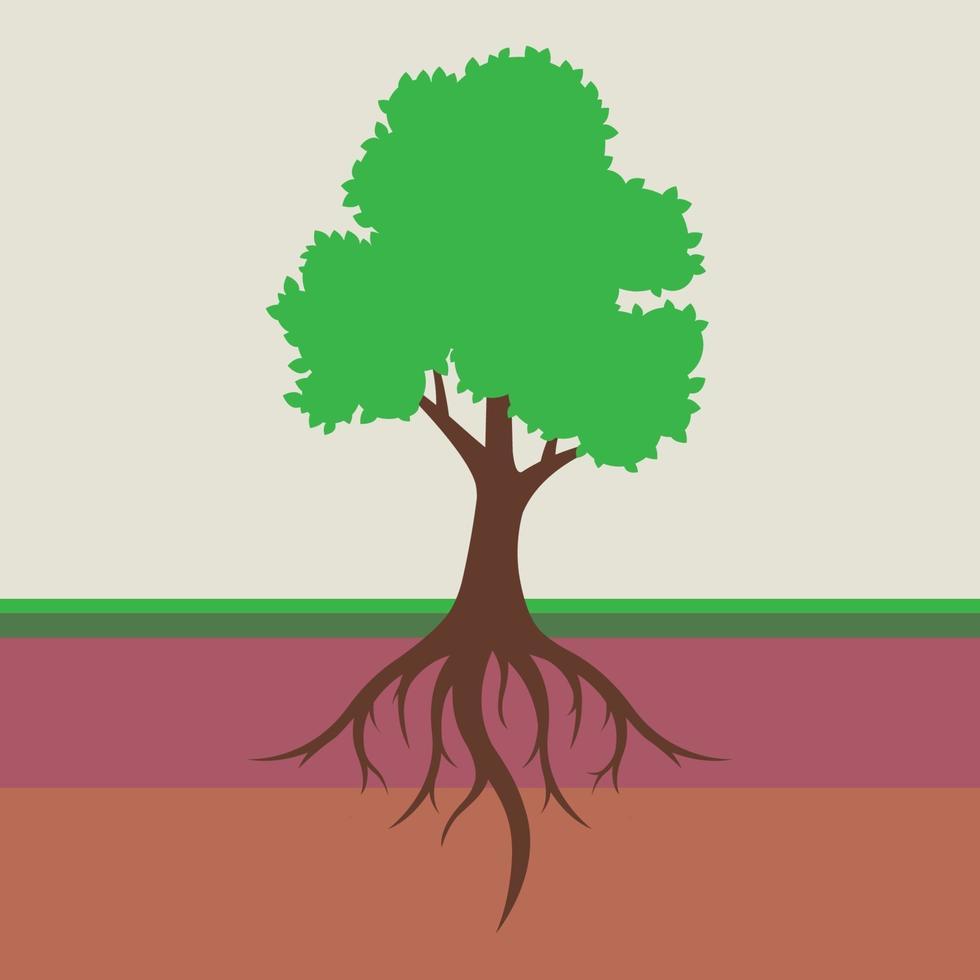Wurzelsystem eines Baumes mit Blättern. Teilen Sie den Boden in eine Schicht. flache Vektorillustration. vektor