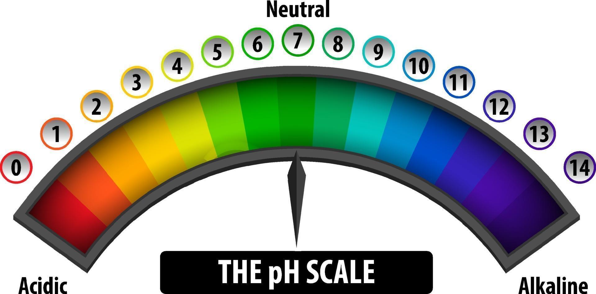ph-skalningsdiagrammet på vit bakgrund vektor