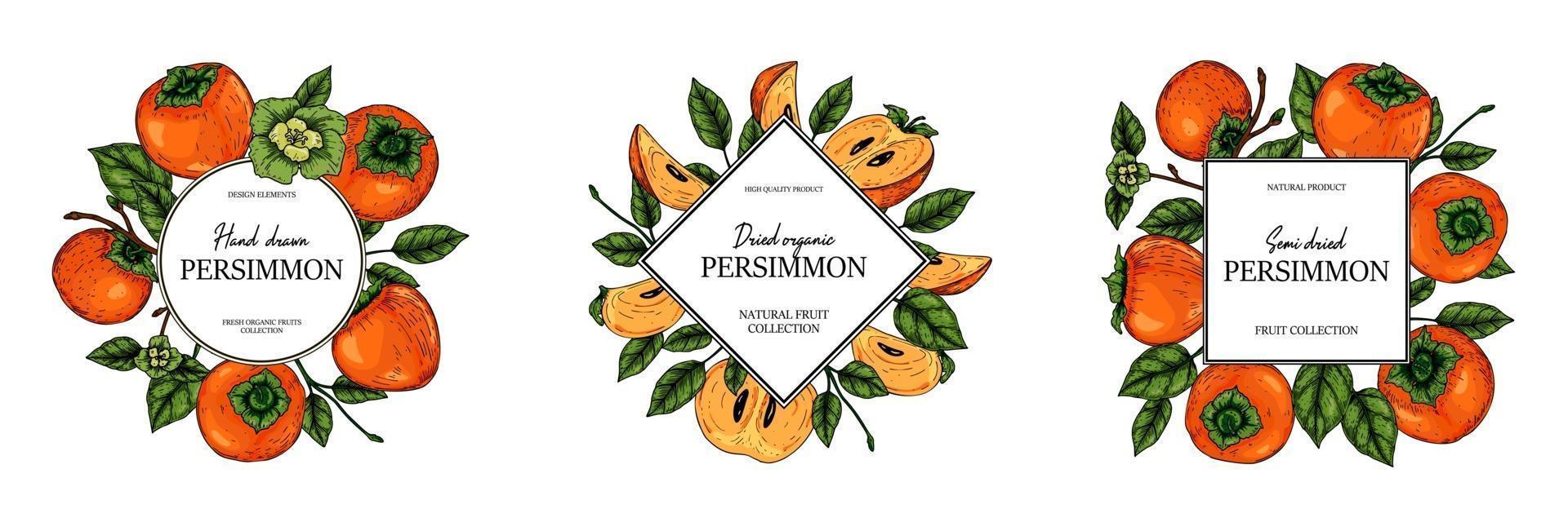 färgglad persimmon design. vektor