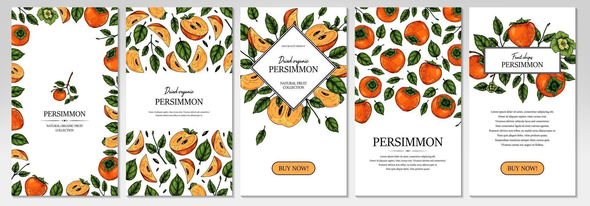 uppsättning handritad färgrik persimmon vertikal design. vektorillustration i färgad skissstil. vektor
