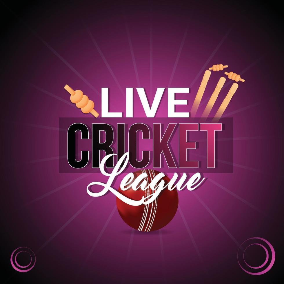 Cricket-Meisterschaftsspiel mit Stadion vektor