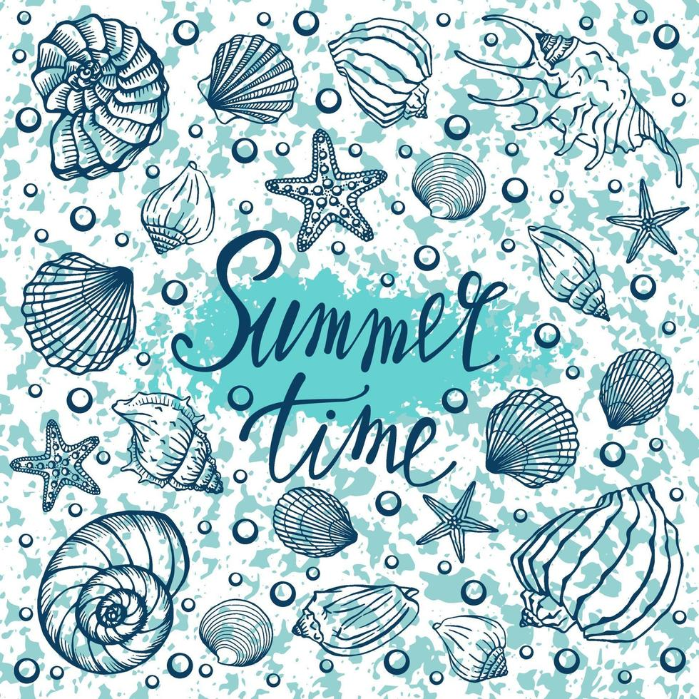 snäckskal, sommar, semester, uppsättning snäckskal och sjöstjärnor, vektor. handritade snäckskal och sjöstjärnor. vacker inskrift i modern kalligrafi. vektor