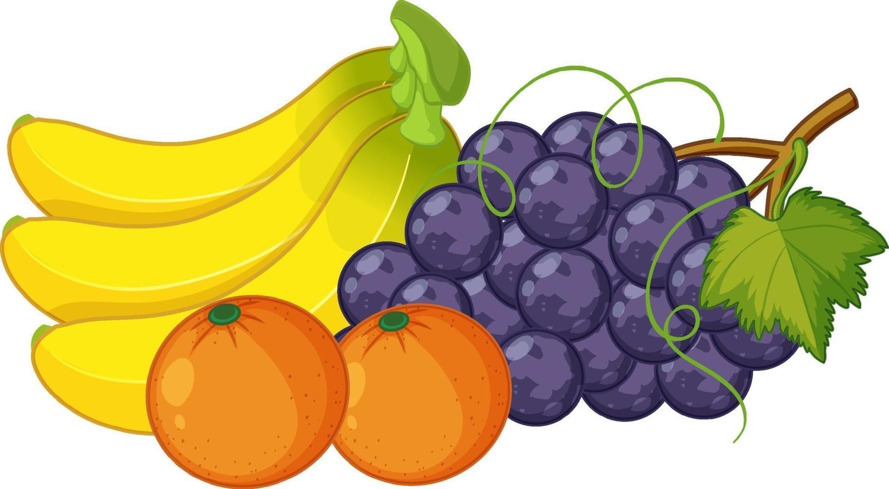 grupp av frukter isolerad på vit bakgrund vektor