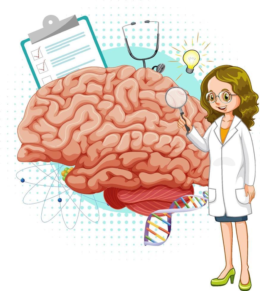 Arzt und Gehirn auf weißem Hintergrund vektor