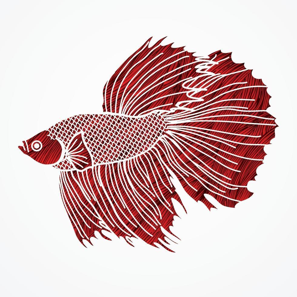 betta siamesiska stridsfisk vektor