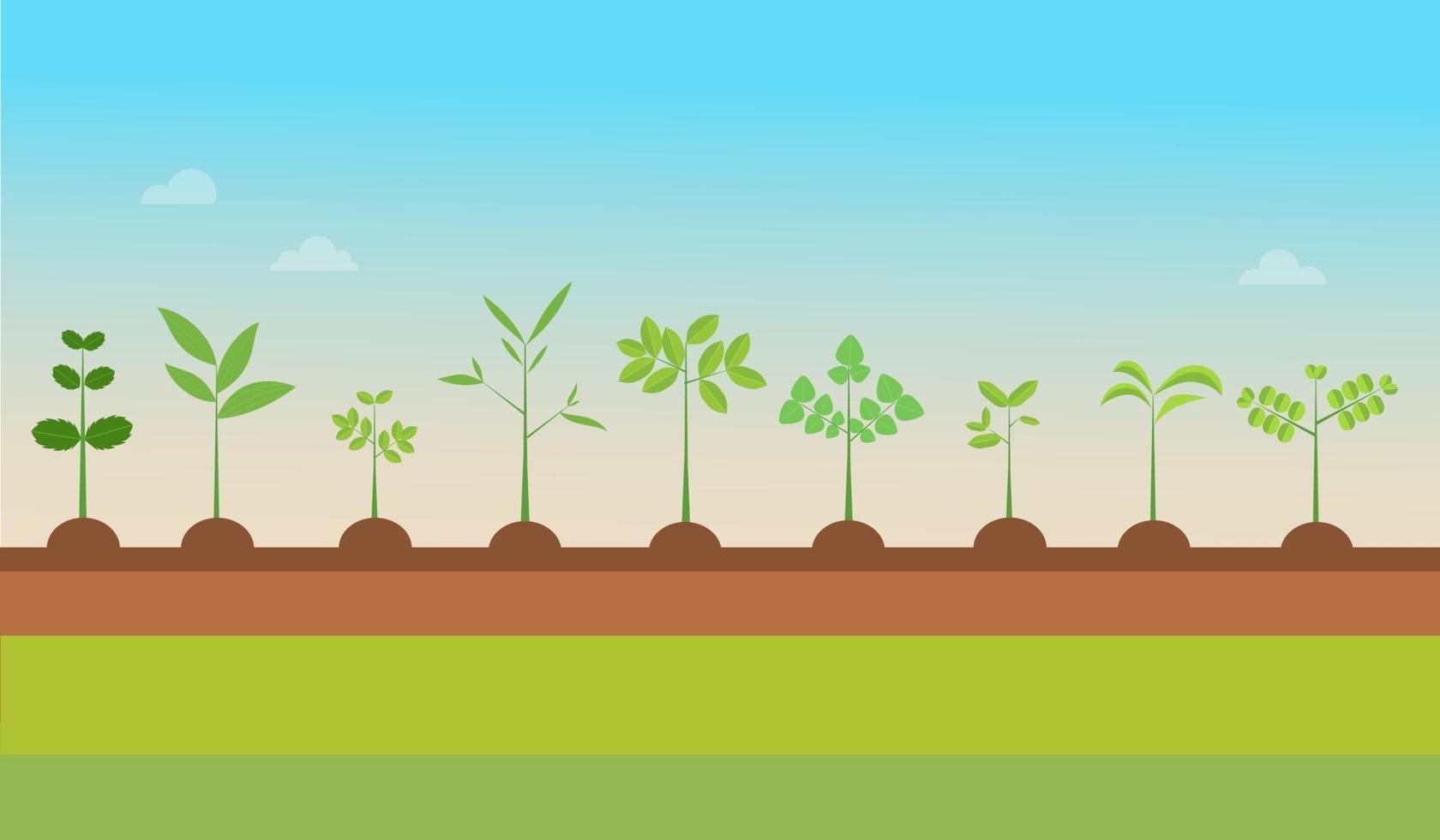 växttyper växer med natur bakgrund. vektorillustration. plantor gröna träd. växter på marken. trädplantor vektor