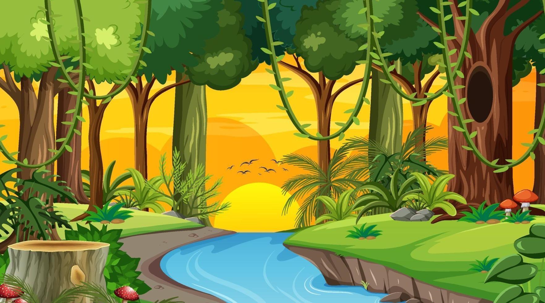 skog landskap scen vid solnedgången tid med många olika träd vektor