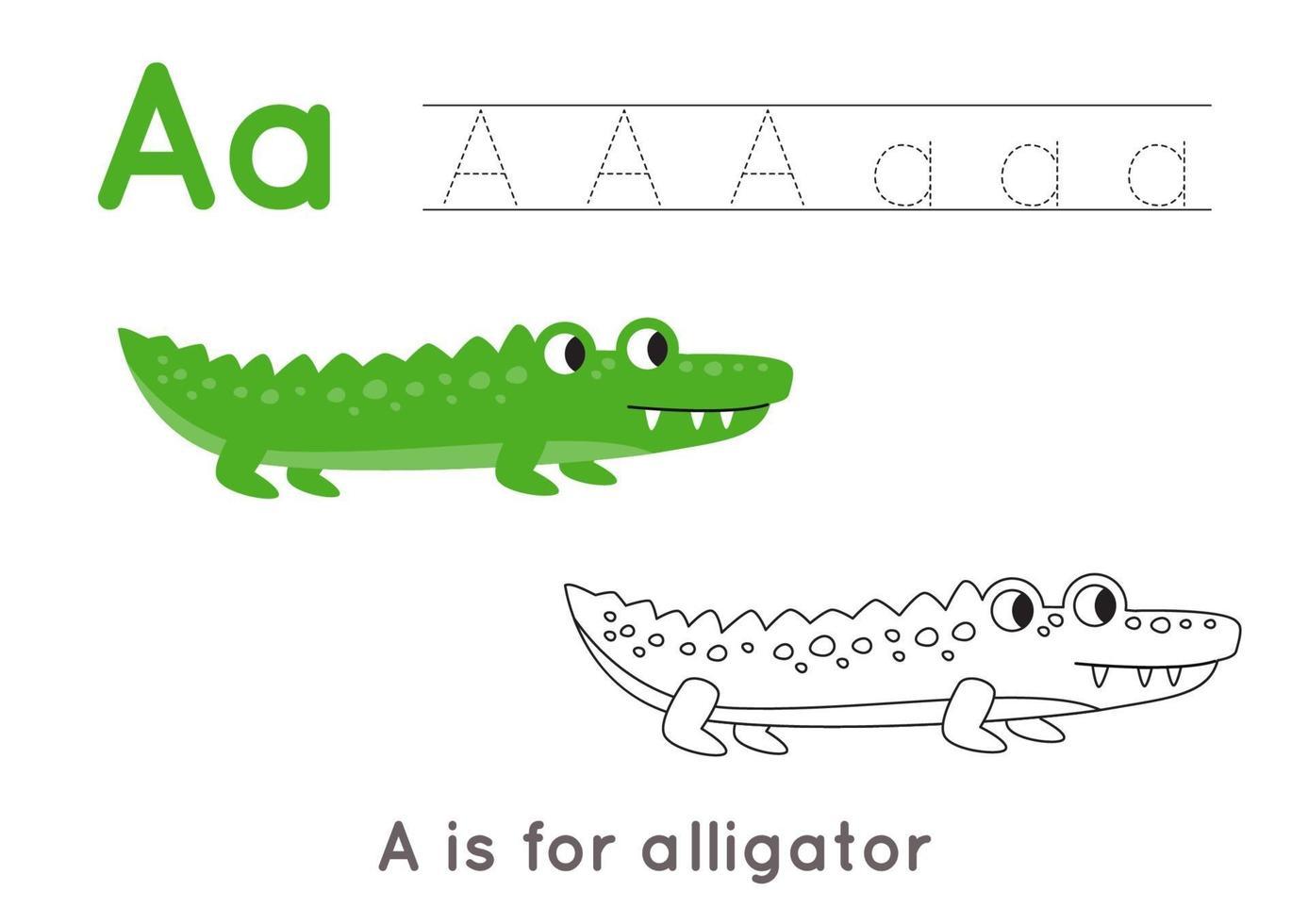 färg- och spårningssida med bokstav a och söt tecknad alligator. vektor