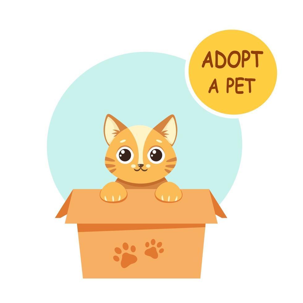 adoptera ett husdjur. söt kattunge i lådan. vektor illustration