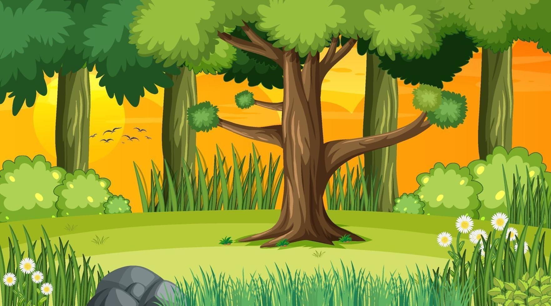 skog landskap scen vid solnedgången vektor