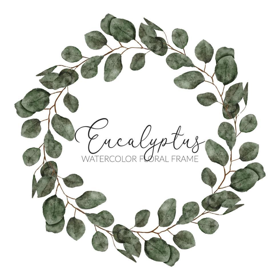 akvarell eukalyptus blad cirkel krans ram vektor