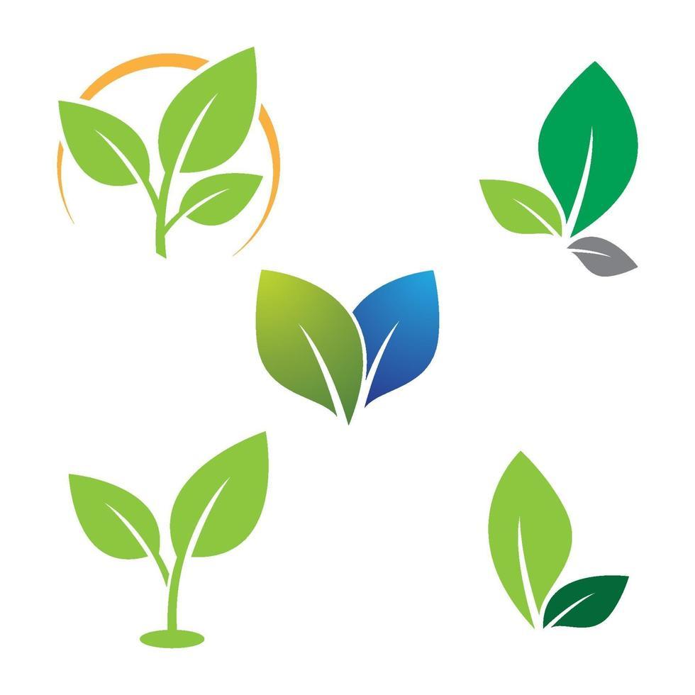 Blatt Logo Bilder vektor