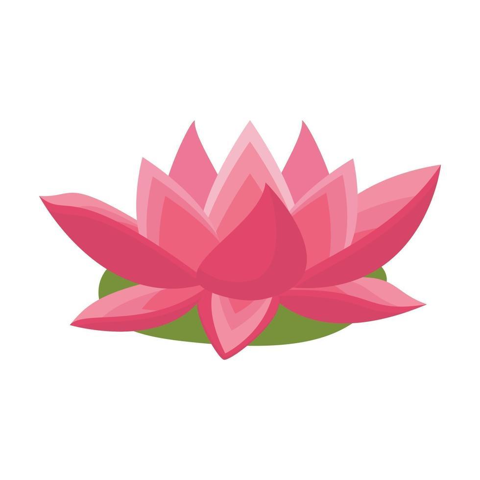 rosa lotusblomma vektor