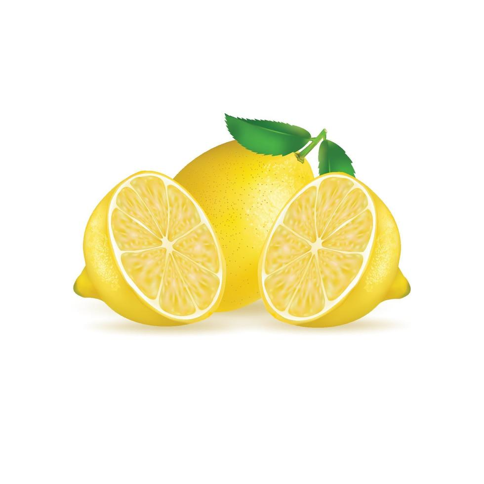frische Zitronenfrucht lokalisiert auf weißem Hintergrund. Abbildung realistischer Vektor