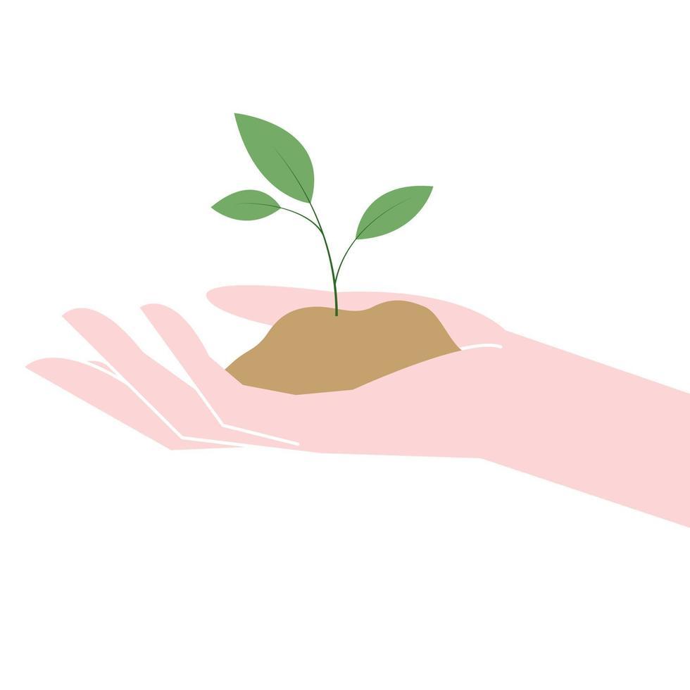 hand med växande ung växt vektor
