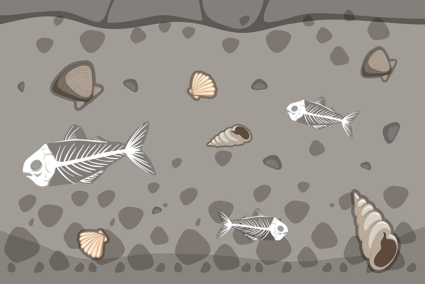 unterirdischer Boden mit Fischgräten- und Muschelfossilien vektor