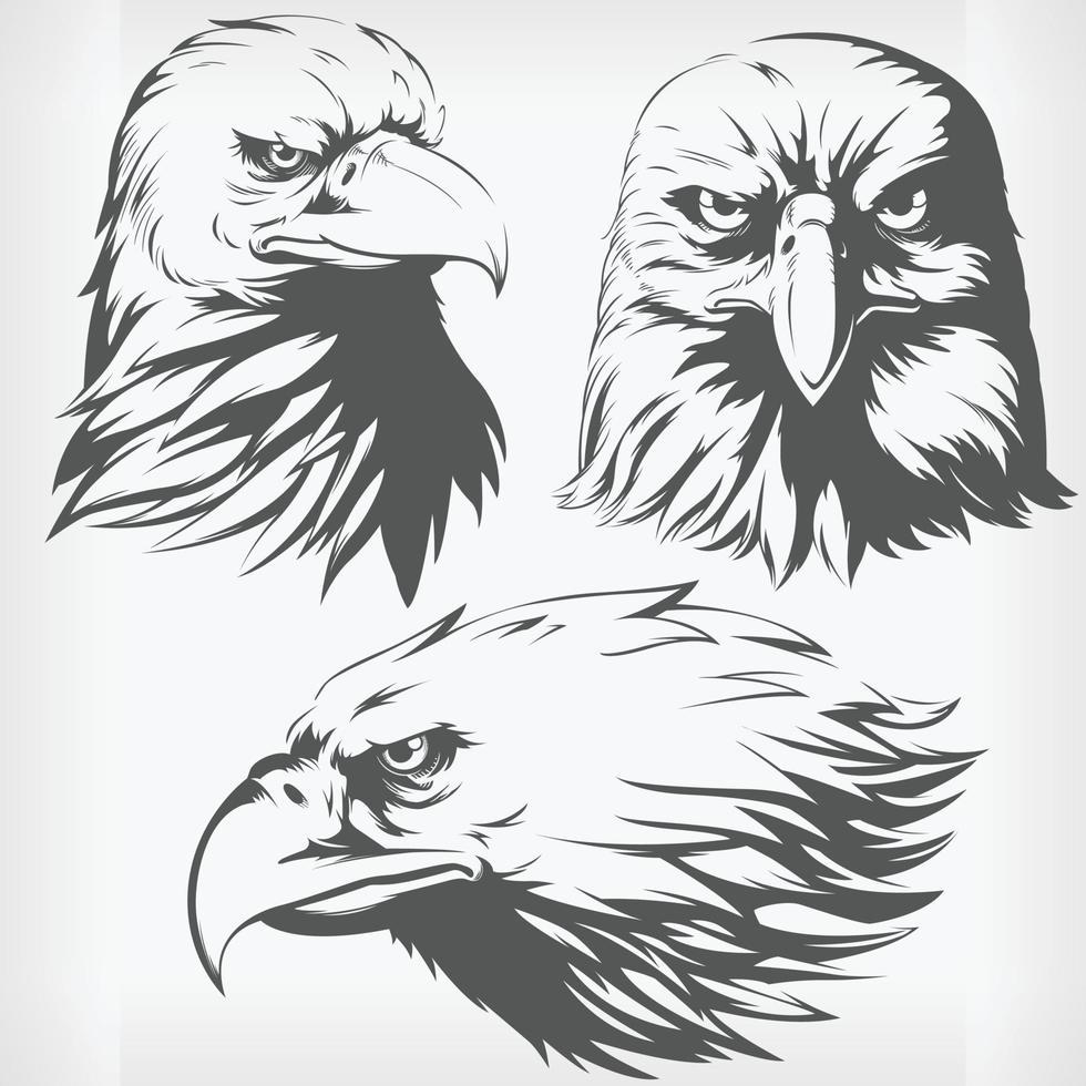 Silhouette Adlerkopf Falke Falke Schablone vordere Seitenansicht Zeichnung vektor