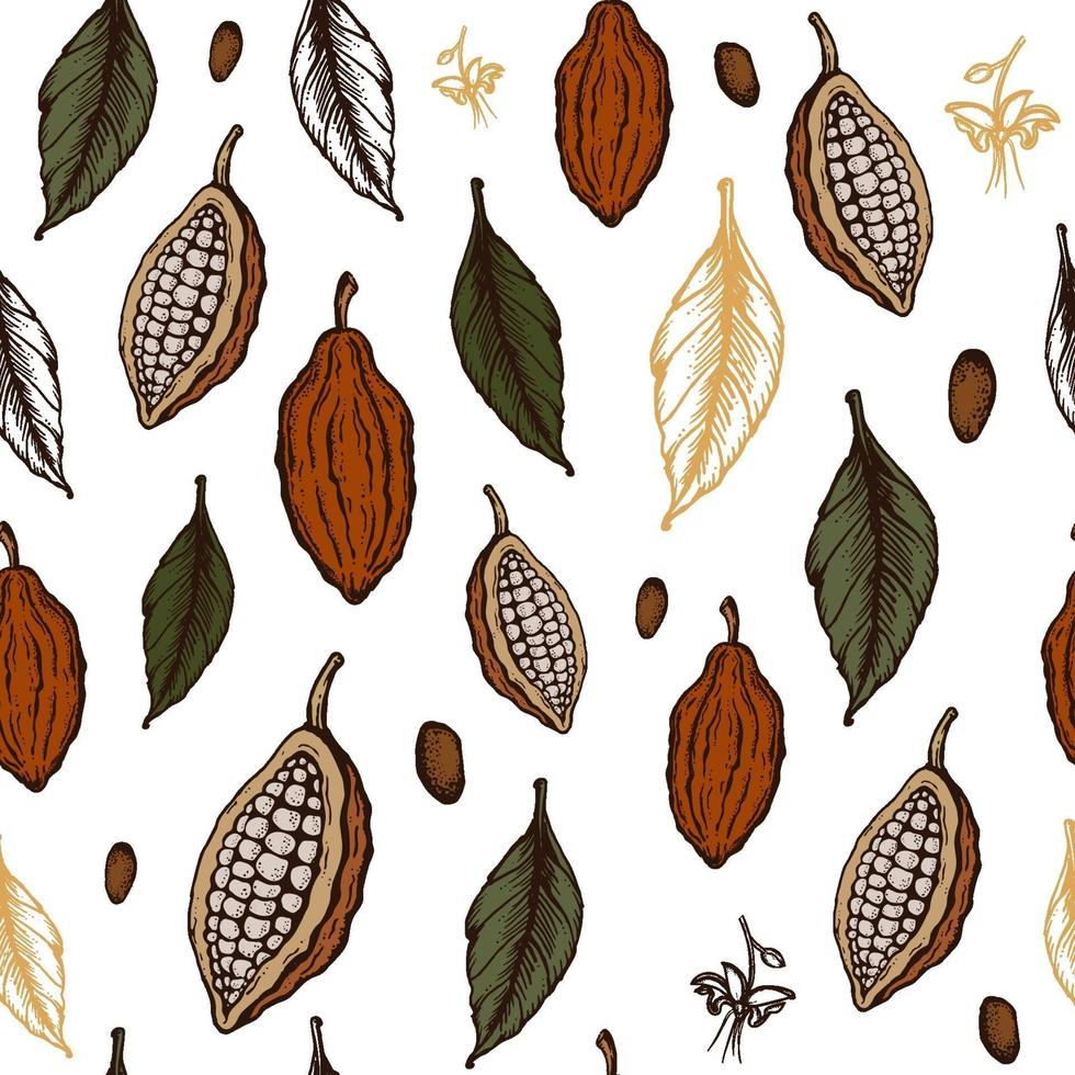 nahtloses Muster der Kakaobohnen. Gravierte Art Skizze Hand gezeichnete Illustration. Schokolade Kakaobohne, Blätter, Samen, Blumen und Nüsse Vektor. vektor