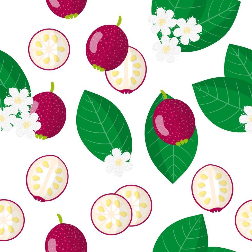 Nahtloses Muster der Vektorkarikatur mit exotischen Früchten, Blumen und Blättern der Cattley-Guave auf weißem Hintergrund vektor