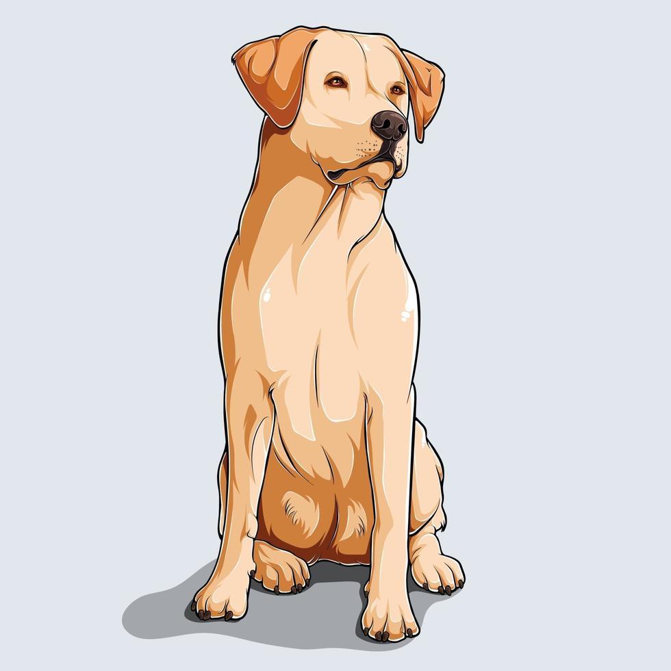 söt beige labrador retriever hund sitter illustrerad med färgglada skuggor och ljus isolerad på vit bakgrund vektor