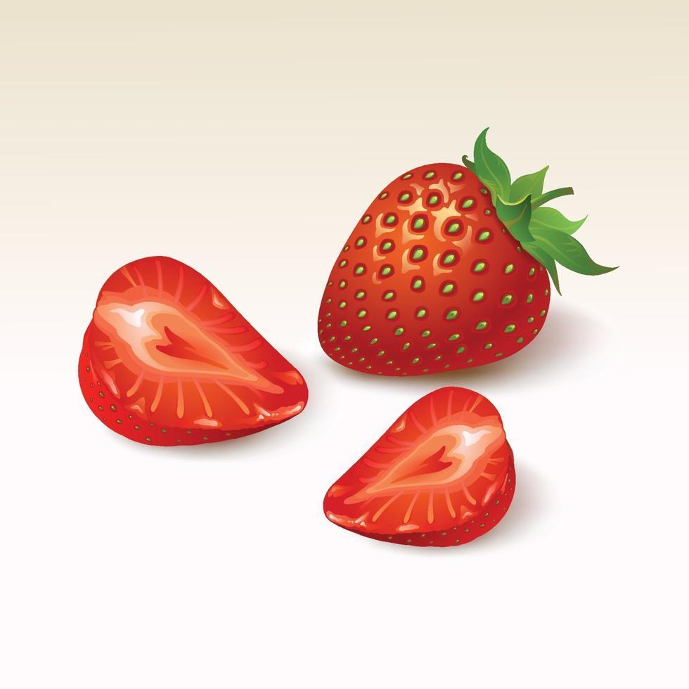 Erdbeere reif auf weißem Hintergrund vektor