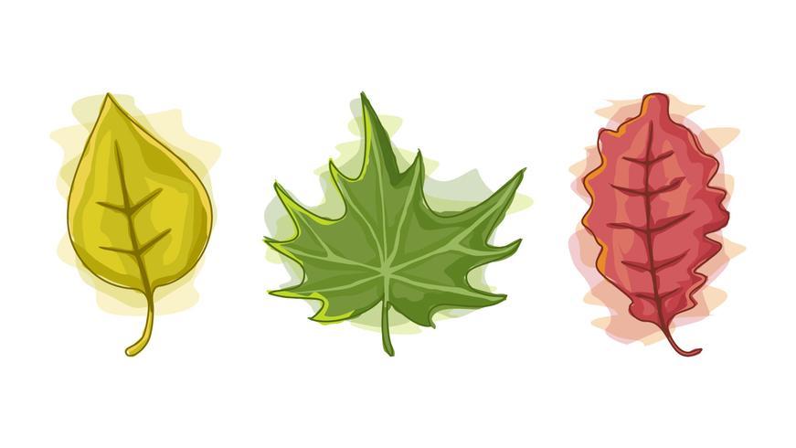 Schöne Herbst-Aquarell-Blumensatz-Vektoren vektor